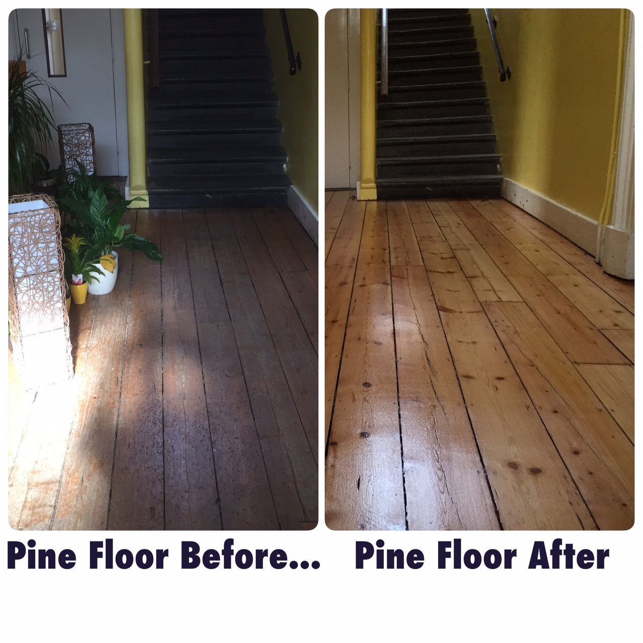 Wood Floor Sanding Bournemouth